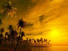 Free Sunset Stock Photo - 5865420