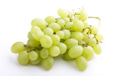 Free Grapes Stock Photography - 5867282
