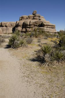 Free Rock Formations At Joshua Tree National Park, Cali Stock Images - 5867694