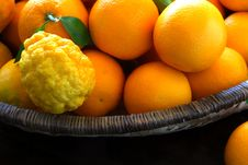 Free Oranges And Lemons In Basket Royalty Free Stock Photos - 5868348
