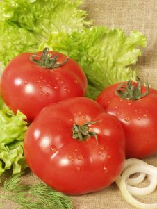 Free Three Red Tomatoes Royalty Free Stock Image - 5869126