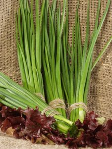 Bunches Of The Cut Off Green Onions Stock Image