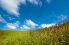 Free Meadow Royalty Free Stock Image - 5869336