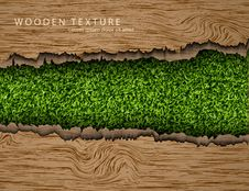 Free Wooden Background With Shadows And Grass Royalty Free Stock Image - 58675836