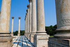 Free Capitol Columns Royalty Free Stock Images - 5870089