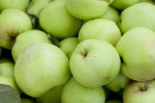 Free Green Apples Stock Photo - 5870770