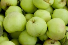 Free Green Apples Stock Photography - 5870772