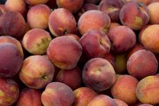 Free Peaches Royalty Free Stock Photography - 5870797