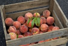Free Peaches Stock Photography - 5870822