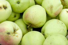 Free Green Apples Stock Photography - 5870882