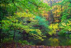 Free Autumn River Stock Images - 5871734