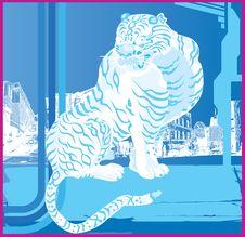 Free Tiger Royalty Free Stock Photo - 5871935