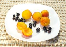 Apricots And Currant On A Plate Royalty Free Stock Photography