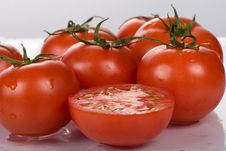 Free Tomatoes Stock Photo - 5873810
