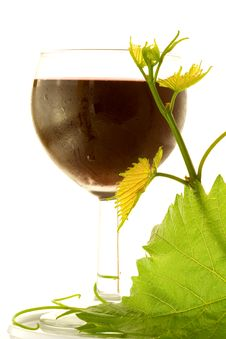 Free Red Glass Wine Stock Photo - 5874740
