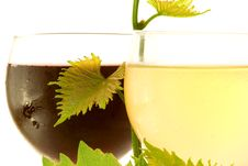 Free Red And White Glass Wine Royalty Free Stock Photos - 5874778