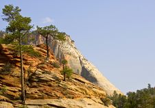 Free Zion National Park Royalty Free Stock Photography - 5875037