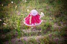 Free Child In A Flower Field Stock Images - 5876134