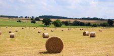 Free Hay Bales Royalty Free Stock Image - 5876336