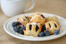Free Blueberry Pastry Stock Image - 5878341