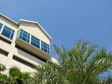Beach Resort Side With Palm Fronds Stock Photos