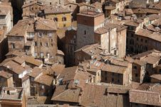 Free View Over Siena From The Tower Of Palazzo Pubblico Royalty Free Stock Images - 5883249