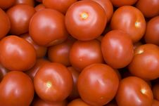 Free Red Tomatoes Royalty Free Stock Photo - 5885655