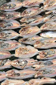 Sun Dried Salted Fish Stock Photos