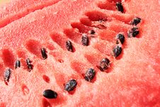 Free Water-melon Stock Images - 5887184