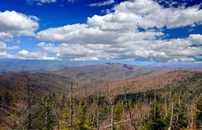 Free Smoky Mountain National Park Royalty Free Stock Photography - 5887377