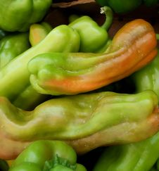 Free Green Hot Peppers Stock Photo - 5887980