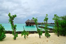 Free Maldives, Welcome To Paradise! Royalty Free Stock Photos - 5888088