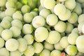 Free Grapes On Grapevine Stock Photos - 5895083