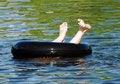 Free Feet Stock Photography - 5896142