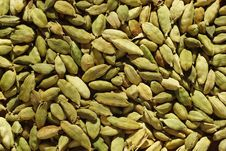 Free Cardamom Stock Images - 5890714