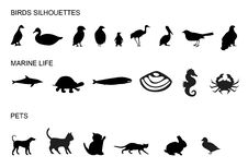 Free Many Animals Silhouettes Royalty Free Stock Photo - 5892745