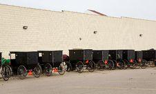 Free Amish Horse Drawn Buggies Royalty Free Stock Photos - 5893068