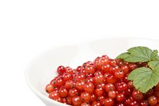 Free Berries In A Bowl Stock Images - 5895094