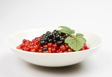Close Shot Of Berries In A Bowl Stock Image