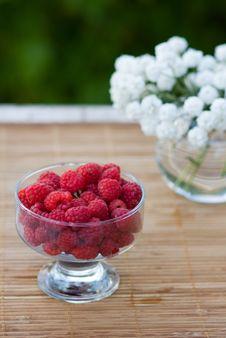 Free Raspberry Stock Image - 5895511