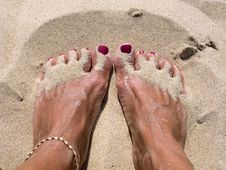 Free Sandy Feet Stock Photo - 5895600