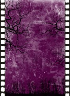 Free Grange Background Royalty Free Stock Images - 5896509