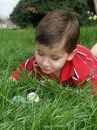 Free Boy With Eggs 9 Stock Photography - 591412