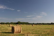 Free Harvested Rolls Of Hay Stock Photography - 592712