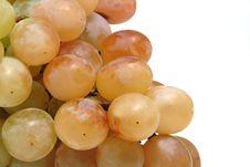 Free White Grapes Stock Photos - 592883