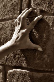 Free Female Hand Stock Photography - 596742