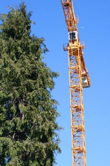 Free Yellow Crane And Tall Tree Stock Images - 597734