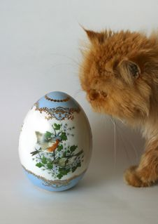 Free Easter Egg And Cat Stock Image - 599201