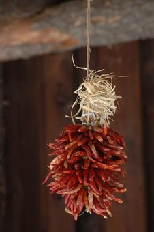 Free Hanging Chillies Royalty Free Stock Images - 599889