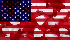 American Flag With Petal Texture Stock Image